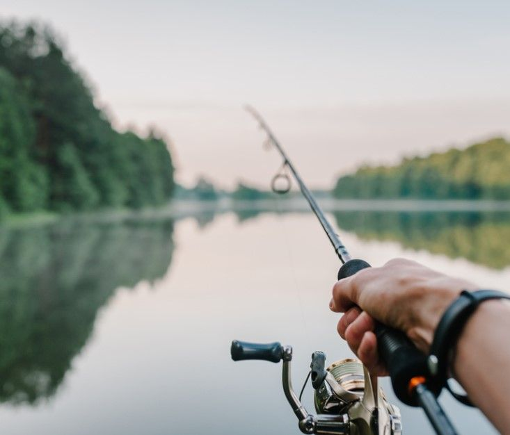 Best Bass Fishing Rod Review