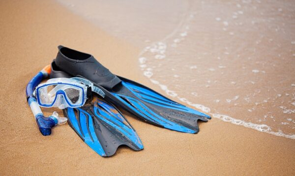 Best Snorkel Gear For You