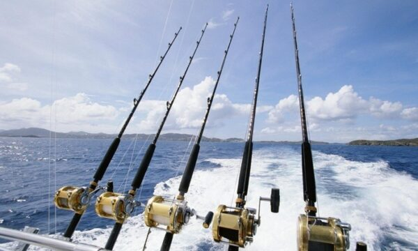 Planning A Fishing Trip?